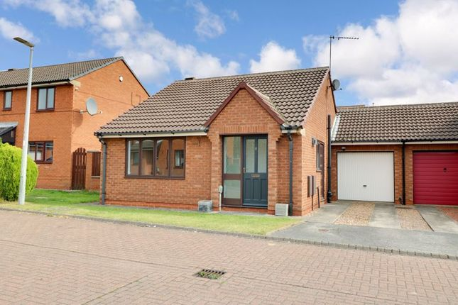 Thumbnail Detached bungalow to rent in Meadow Way, Cottingham
