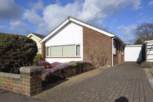 Thumbnail Detached bungalow for sale in Rosemary Avenue, Old Felixstowe, Felixstowe