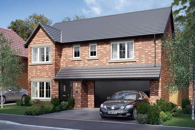 "Thumbnail Detached house for sale in ""The Cotham"" at Malt Mill Close, Kilsby, Rugby"