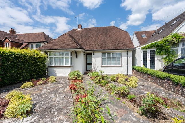 Thumbnail Detached house for sale in The Avenue, Brockham, Betchworth