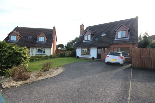 Thumbnail Detached house for sale in Marlo Heights, Bangor