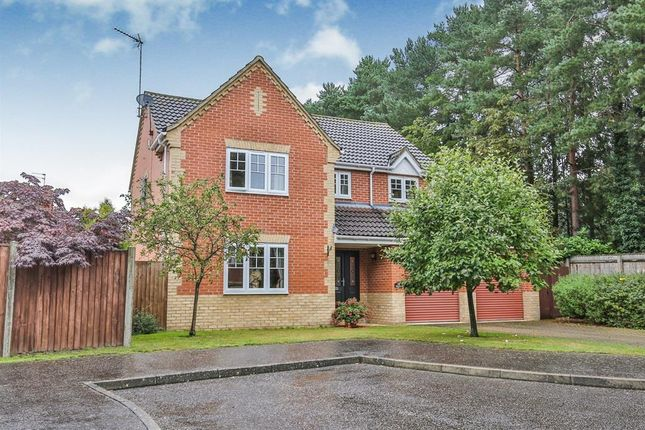 Thumbnail Property to rent in Sego Vale, Taverham, Norwich