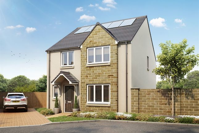 """Thumbnail Detached house for sale in """"The Crammond """" at Brodie Road, Dunbar"""