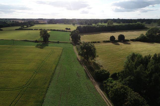Rutland of Holywell Road, Clipsham, Oakham, Rutland LE15
