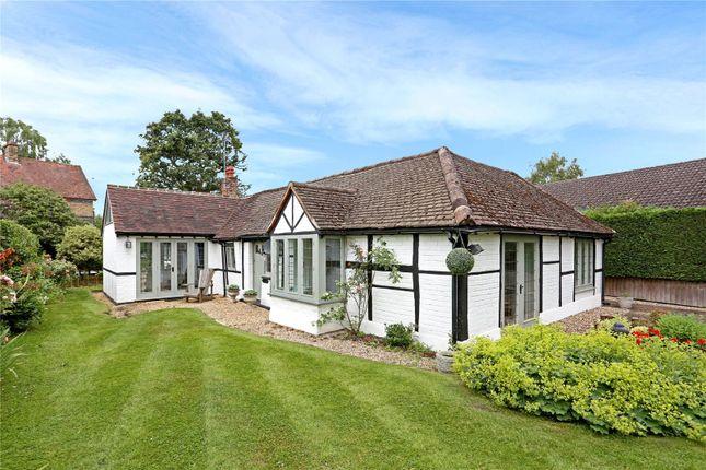 Thumbnail Detached bungalow for sale in Mincing Lane, Chobham, Surrey