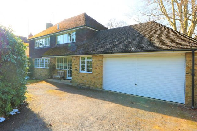 Thumbnail Detached house to rent in Upper Park Road, Camberley