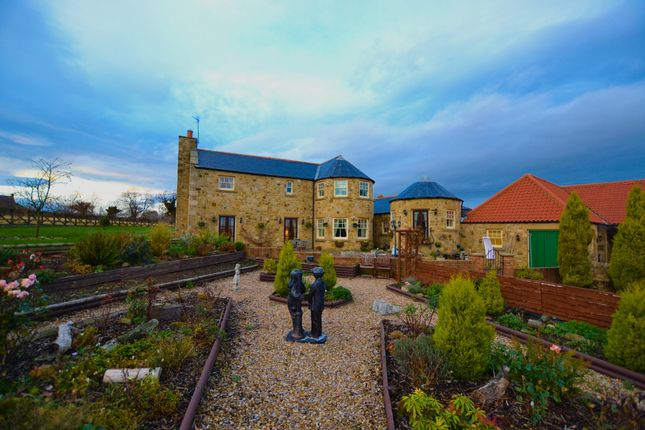 Thumbnail Farmhouse for sale in Alumn Waters, New Brancepeth