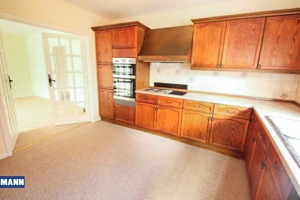 Thumbnail Bungalow to rent in London Road, Farningham