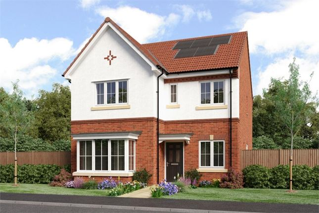 "Thumbnail Detached house for sale in ""Mitford"" at Southport Road, Chorley"