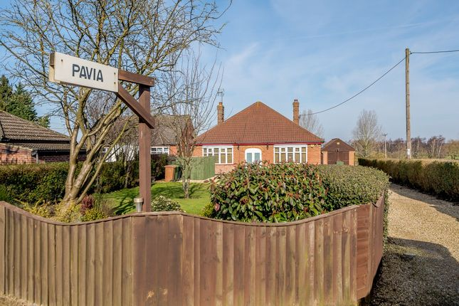 Thumbnail Bungalow for sale in Lynn Road, King's Lynn, Norfolk