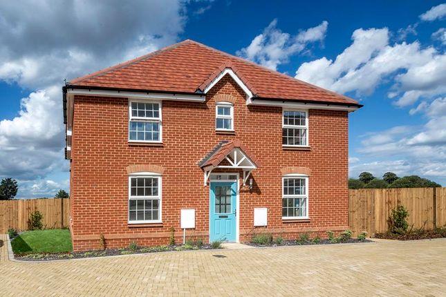 """3 bed semi-detached house for sale in """"Hadley"""" at Brogdale Road, Ospringe, Faversham ME13"""