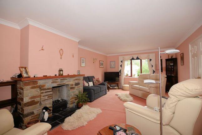 Living Room of Cole Moore Meadow, Tavistock PL19