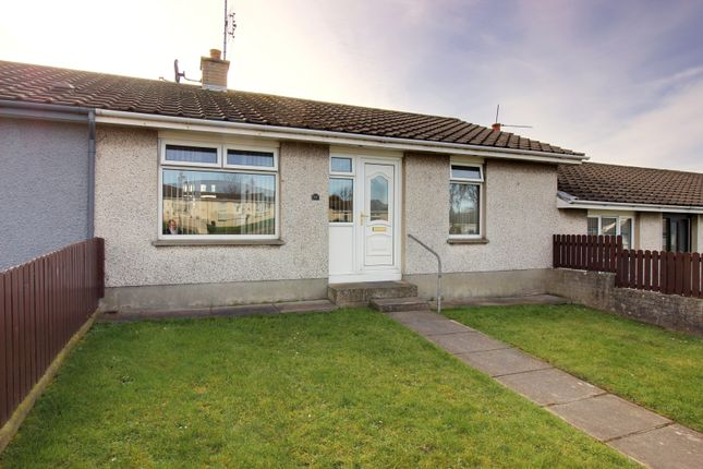 Thumbnail Terraced bungalow for sale in Ashmount Park, Portaferry