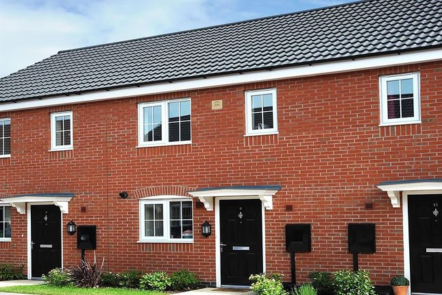 "Thumbnail Terraced house for sale in ""The Alnwick"" at Coton Lane, Tamworth"
