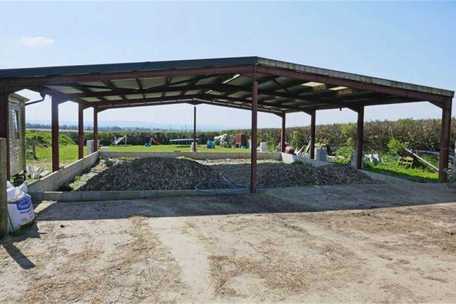 Thumbnail Detached bungalow for sale in Broadwoodwidger, Lifton