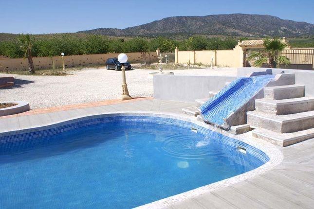 Image14 of Pinoso, Alicante, Spain