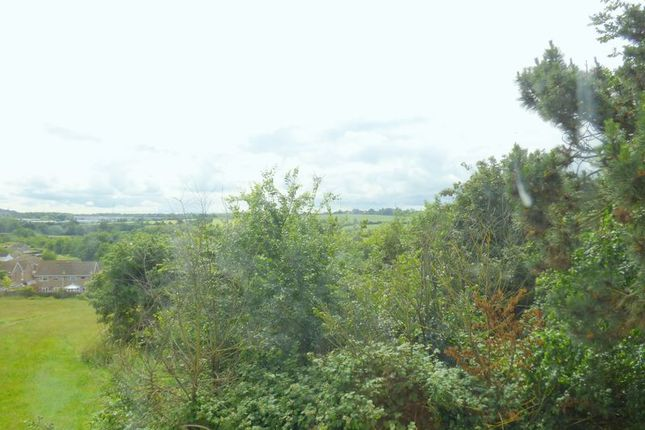 Photo 14 of Pinks Hill, Swanley BR8