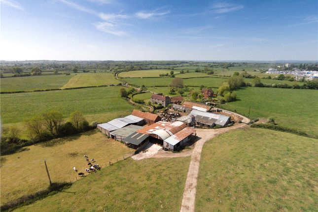 Thumbnail Detached house for sale in Brook Lane, Westbury, Wiltshire