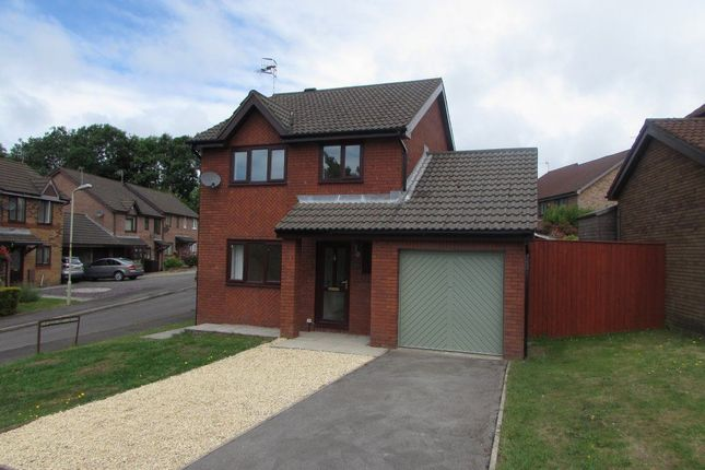 Thumbnail Property to rent in Heol Cambrensis, Pyle