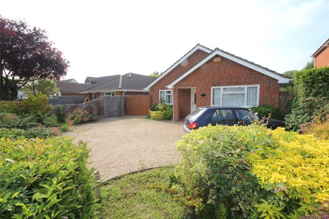 Thumbnail Bungalow for sale in Northfield Road, Ringwood, Hampshire