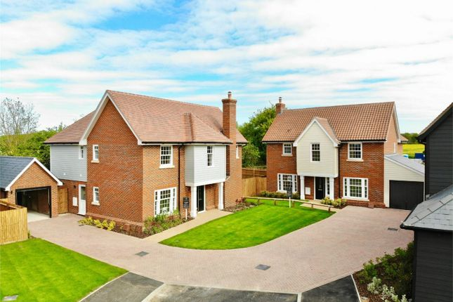Thumbnail Detached house for sale in Meadow Gardens, Widford, Ware, Hertfordshire