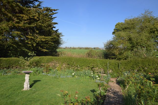 Garden of Priory Close, Pevensey Bay BN24
