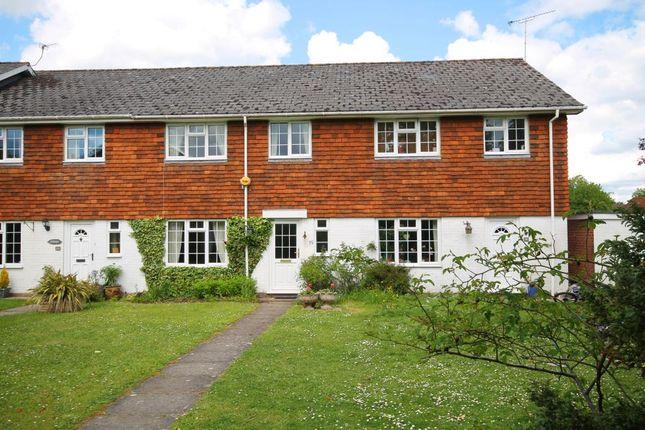 Thumbnail Terraced house to rent in Brockenhurst, Hampshire