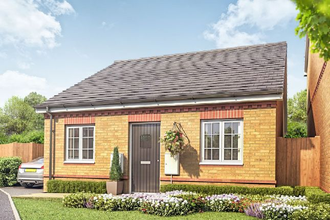 Thumbnail Detached bungalow for sale in Haynes Close, Sawtry, Huntingdon