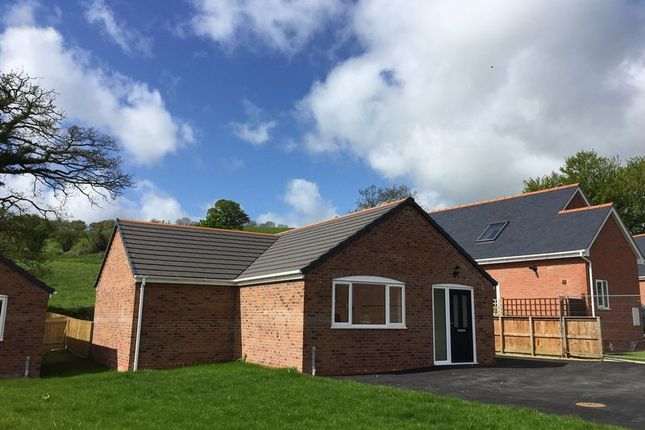 Thumbnail Bungalow for sale in Swallows Meadow, Castle Caereinion, Welshpool