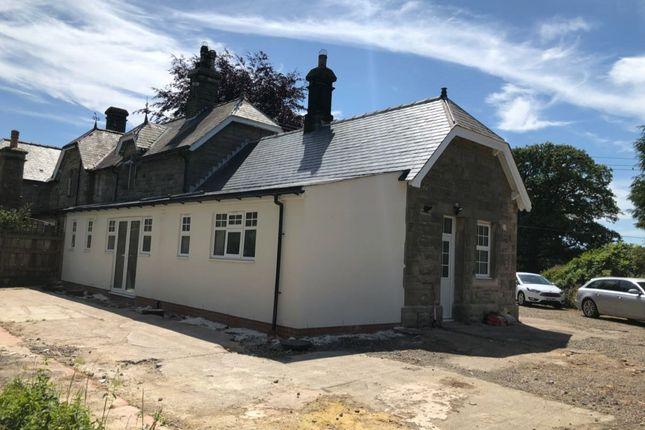 Thumbnail Semi-detached bungalow to rent in Powburn, Alnwick
