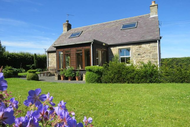 Thumbnail Detached house for sale in Newbigging Croft, Jedburgh