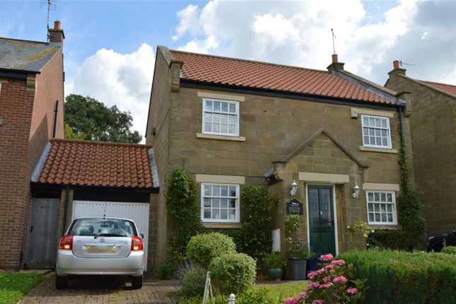 Thumbnail Detached house for sale in Kilton Lodge, Lawns Gill, Skelton-In-Cleveland, Saltburn-By-The-Sea