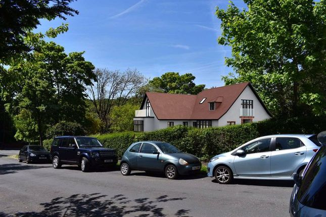Studio for sale in Downs Court Road, Purley CR8