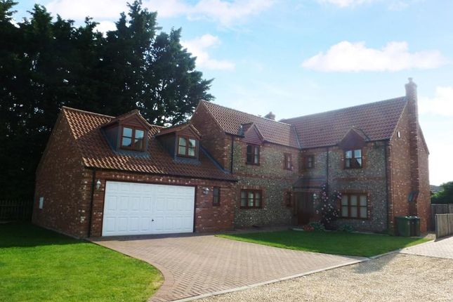 Thumbnail Detached house to rent in Webbs Way, Hockwold, Thetford