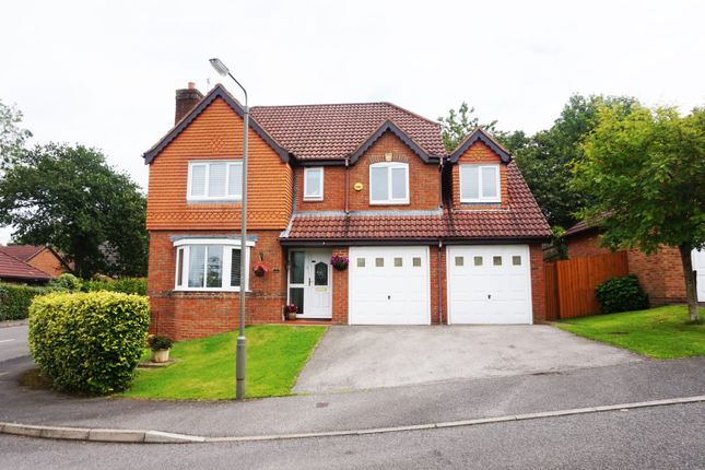 Thumbnail Detached house for sale in Clumber Close, Ashbourne