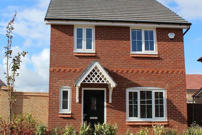 Thumbnail Detached house to rent in Oleander Way, Liverpool, Merseyside