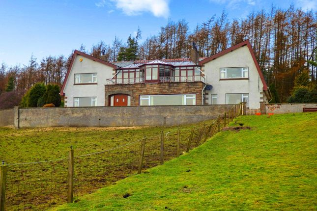 Thumbnail Farmhouse for sale in Forestmill, Alloa, Clackmannanshire