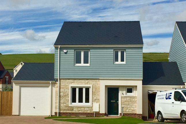 Thumbnail Detached house for sale in Pemberly, Sedge Place, Weymouth