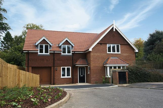 Thumbnail Detached house for sale in Mapleleaf Close, Selsdon, South Croydon