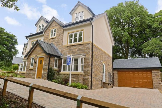 Thumbnail Detached house for sale in Plot 19, Yew Tree Court, The Woodlands, Smithills Dean Road, Bolton
