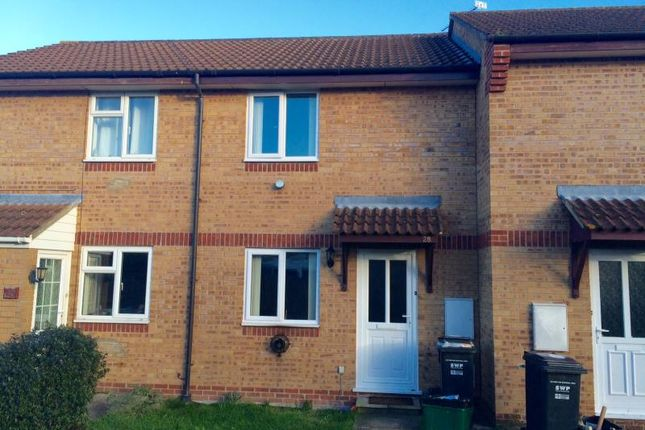Thumbnail Terraced house to rent in Chelmer Close, Taunton, Somerset