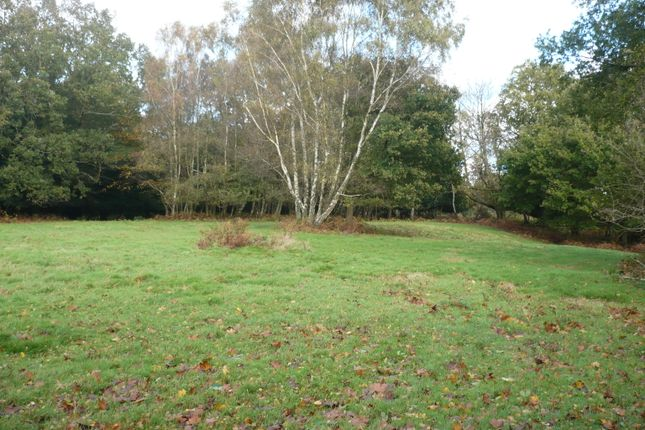 Thumbnail Land for sale in Ashdown Forest, Crowborough Road, Nutley