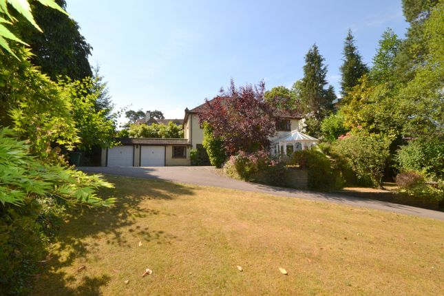 Thumbnail Detached house for sale in Hurst Close, Hook Heath, Woking