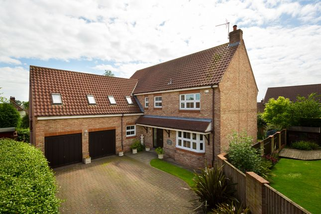 Thumbnail Detached house for sale in The Croft, Kirby Hill, Boroughbridge, York