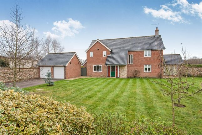 Thumbnail Detached house for sale in Pipers Gardens, Diss