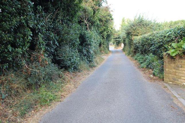 Just Off Chelsfield Lane