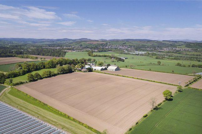 Thumbnail Land for sale in Lot 1 - Rosemount Farm, Blairgowrie, Perthshire