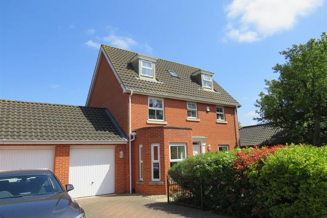 Thumbnail Detached house to rent in Earles Gardens, Norwich