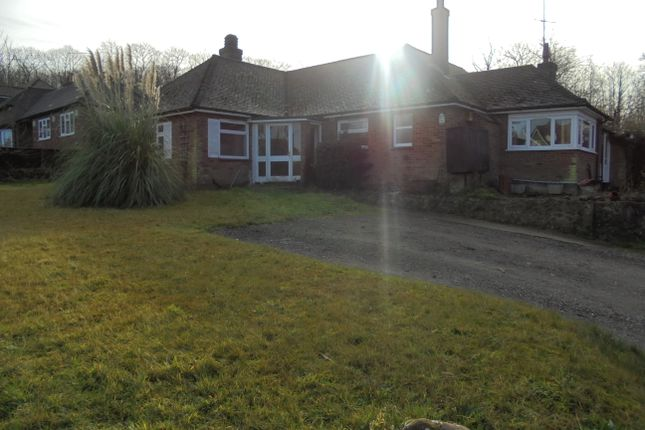 4 bed detached bungalow to rent in Plain Road, Brabourne Lees, Ashford, Kent
