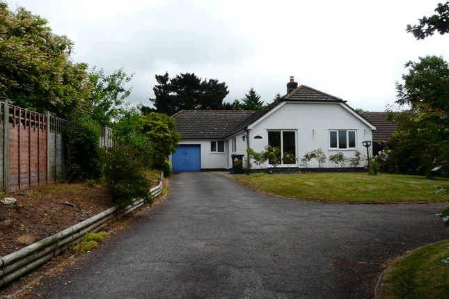 Thumbnail Detached bungalow to rent in Barrow Road, Payhembury, Honiton